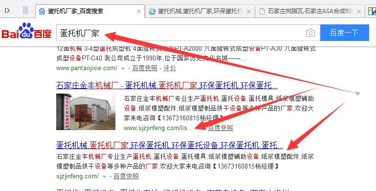 石家庄蛋托机网站建设推广宣传